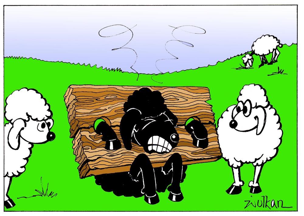 Willkommen Beim Schwarzen Schaf
