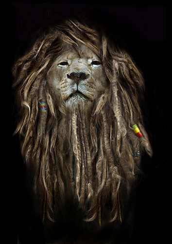 Dreadlocks. Rasta? | Genius Blog