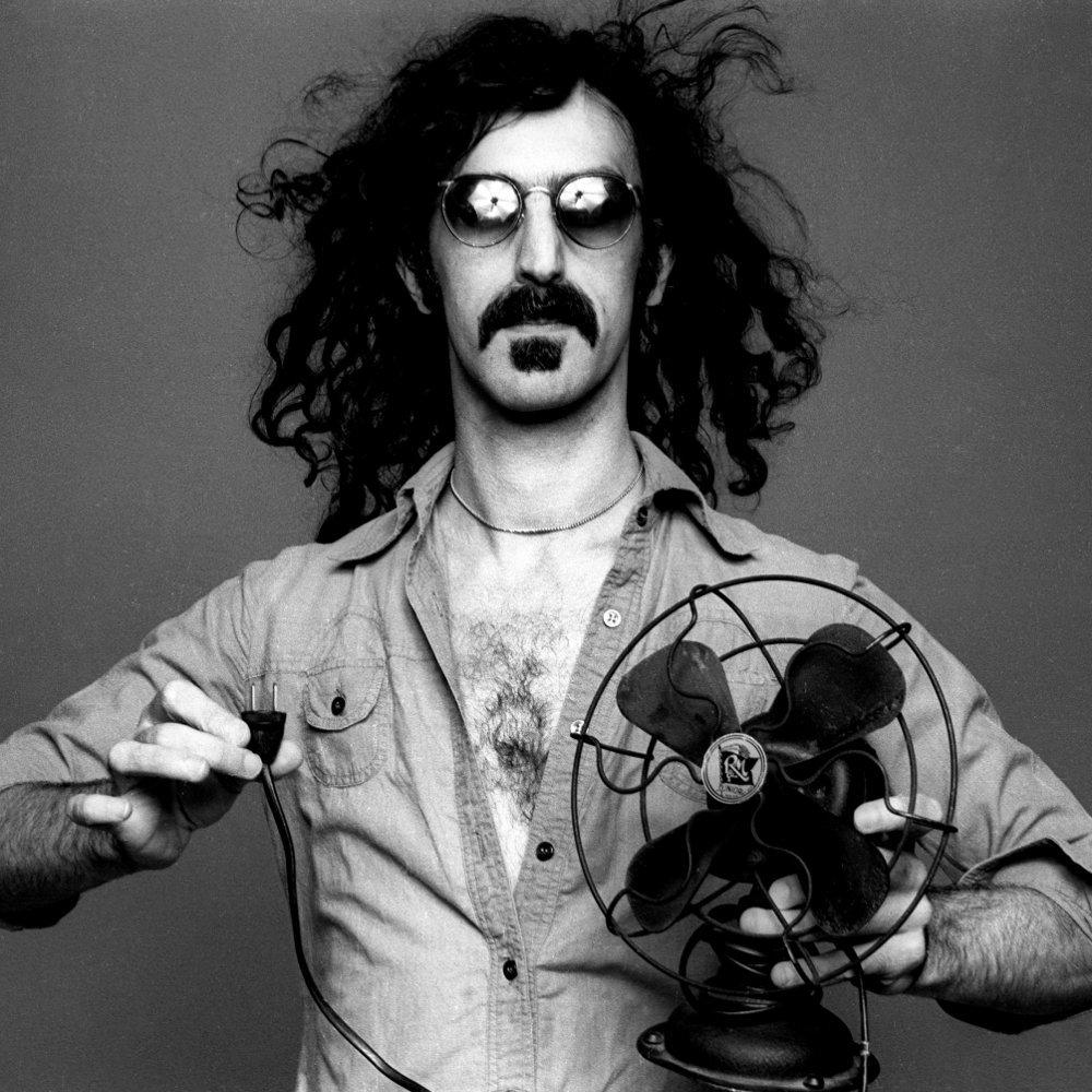 Frank Zappa – Bobby Brown (Goes Down) Lyrics