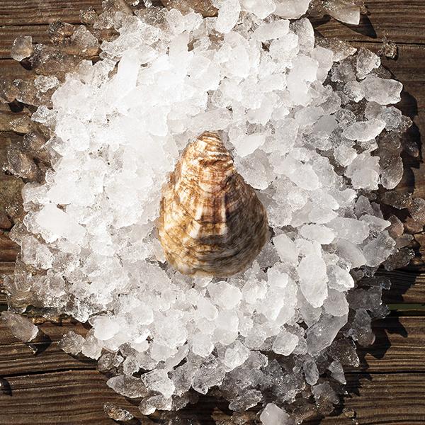 Olde Salt Oysters™ (briny)