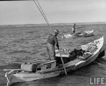 1953   oystermen on the rapp 1