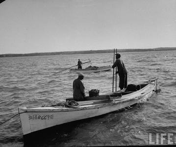 1953   oystermen on the rapp 5