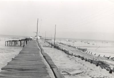 1954   butylo oyster island (post hazel)
