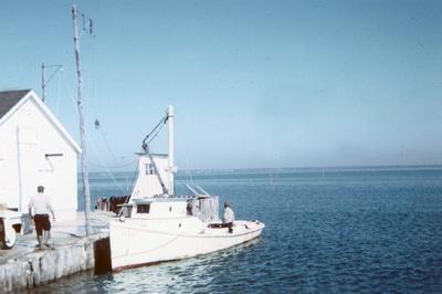 1960   butylo oyster island   02