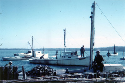 1960   butylo oyster island   10