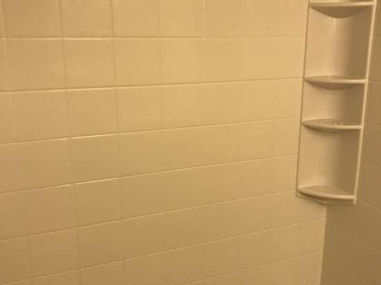 Schalimar   Pullman WA Houses For Rent