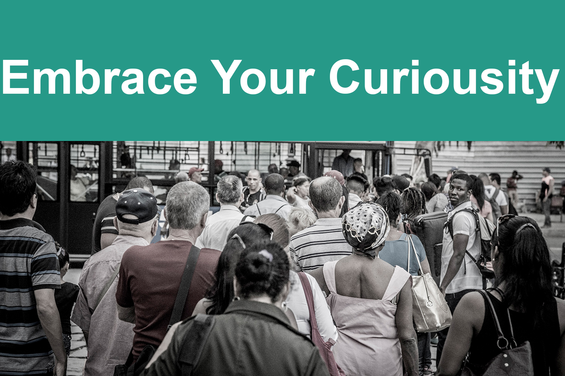 Embrace Your Curiosity