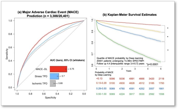Deep Learning with SPECT Accurately Predicts Major Adverse Cardiac Events - Image
