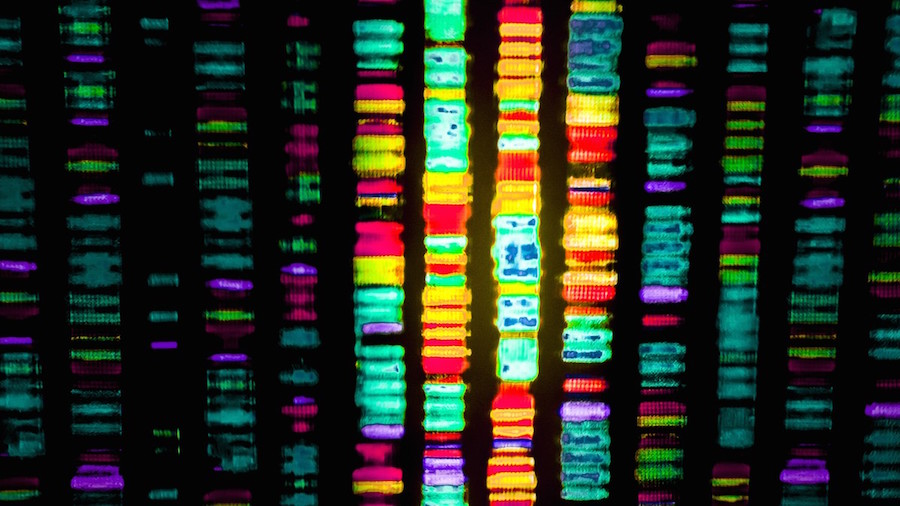Machine Intelligence Is Transforming Genomics & Precision Medicine