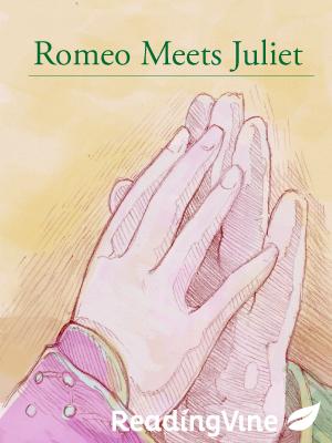 Romeo meets juliet
