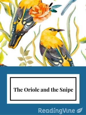 Oriole and snipe