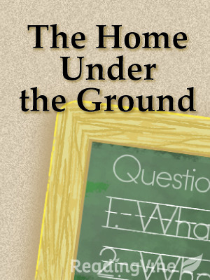 The home under the ground