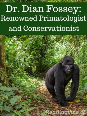 Dr dian fossey primatologist