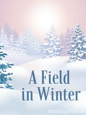 A field in winter r