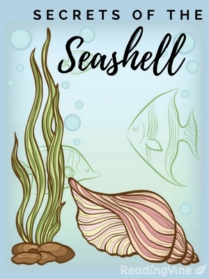 Secrets of the seashell