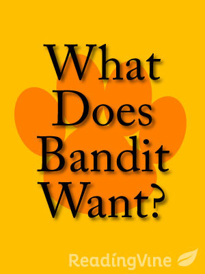 What does bandit want