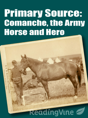 Primary source comanche the army horse