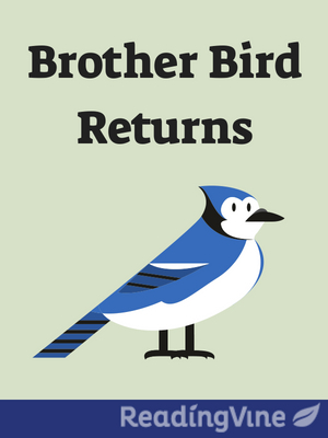 Brother bird returns