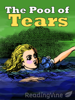 The pool of tears