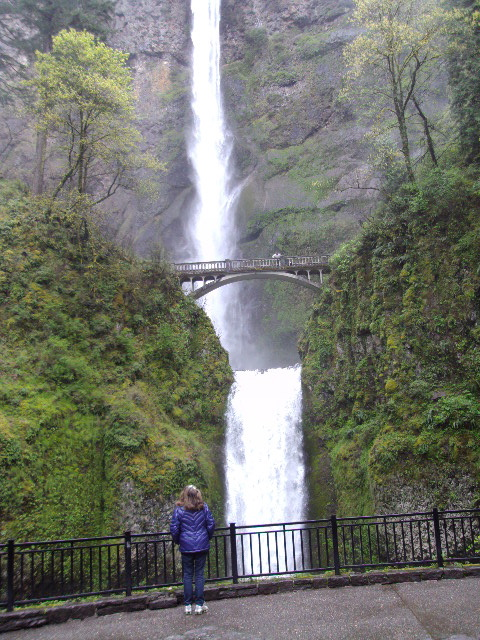 multnomah-falls-and-rose.JPG