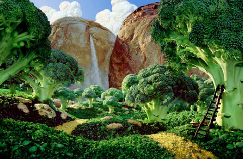 Broccoli Landscape.jpg