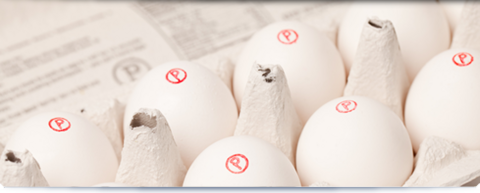 pasteurized-eggs-2.png