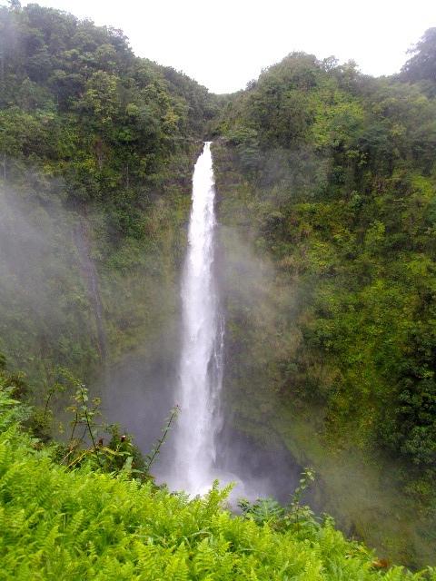 Waimea-Akaka Falls.jpg
