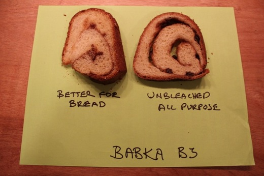 Babka_bread_vs_unbleached_flourl.jpg