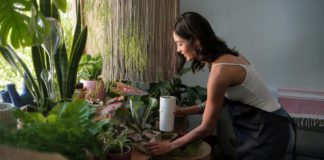 Folks on lockdown are buying up plants to decorate their pads — in part because those with black thumbs are around 24/7 to care for them and in part because they are soothing during stressful times. (iStock)
