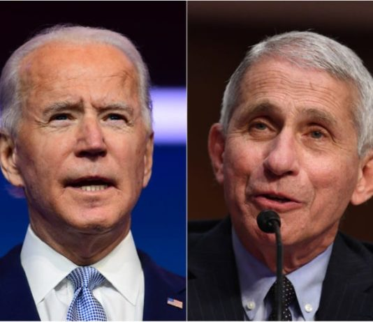 Dr. Anthony Fauci totally accepts Joe Biden's offer
