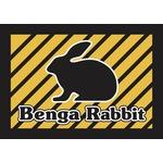 Benga master logo