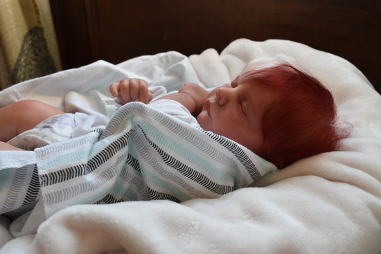 Todoroki Inspired Baby By Living Inspirations Nursery