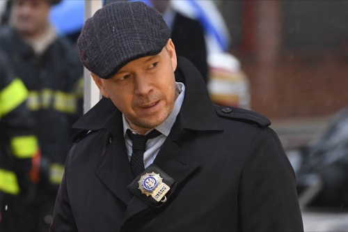 Blue bloods recap