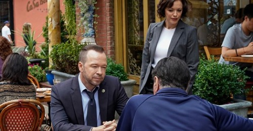 Blue bloods recap 20