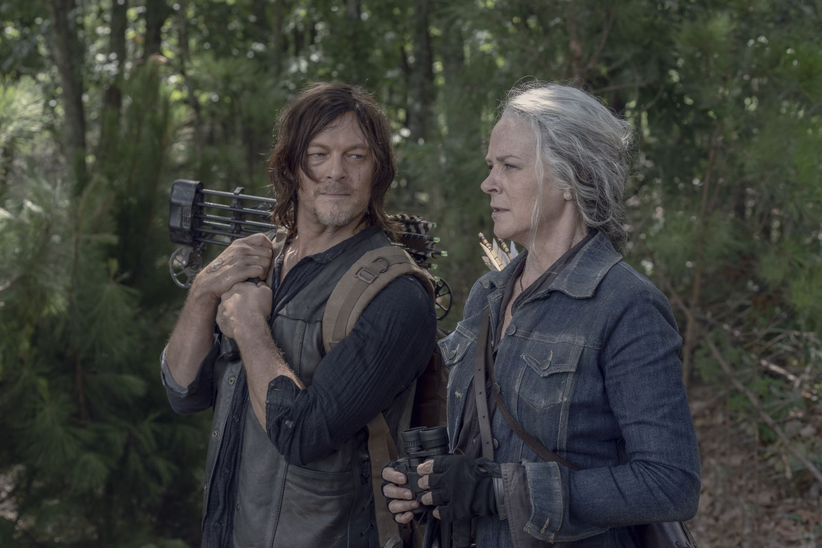 Twd 1006 jd 0805 0393 rt