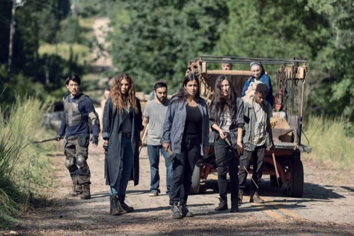 The walking bed recap