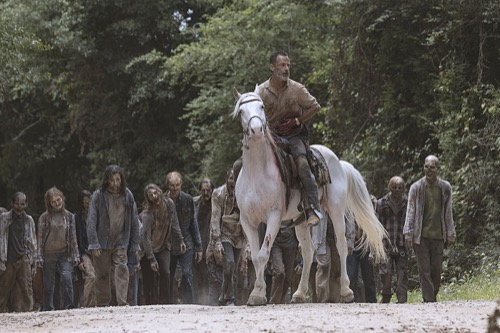 The walking dead recap 17