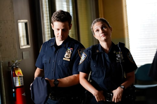 Different houses blue bloods s9e2