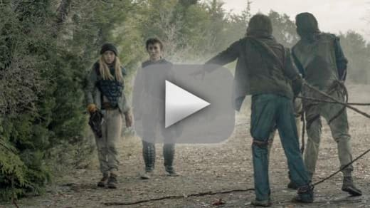 Hitting a snag fear the walking dead