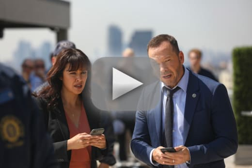 The whole story blue bloods