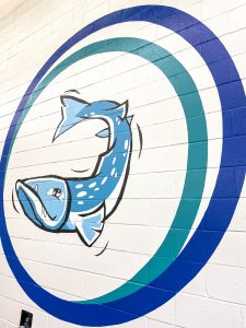 Mural in indoor pool at the WIlson Family YMCA for Barracuda Swim Team logo.