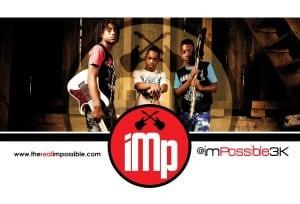 IMP Flyer Revised_2015_2