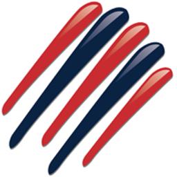 Logo for The New England Team
