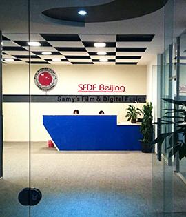 Service_centers_primary_sfdf