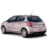 Auto-assist-Peugeot-208-1