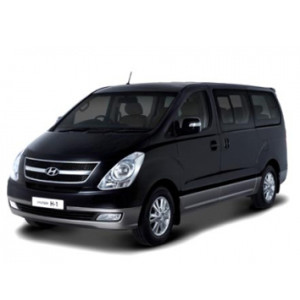 Better-Hyundai-H1-2012-3