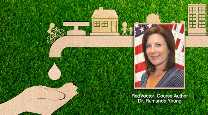 RedVector-courses-authored-by-Dr.-Rumanda-Young