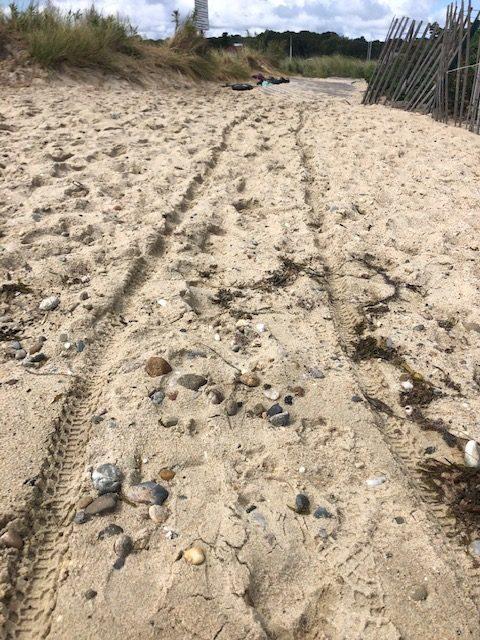 path in martha's vineyward