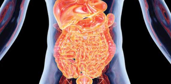 Understanding medication: Bowel Management