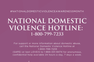 Domestic Violence and the Disabled Community Part I: Defining Domestic Violence